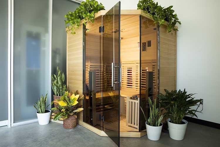 sauna surrounded by indoor plants